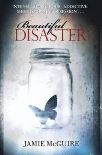 Beautiful Disaster (h�ftad)
