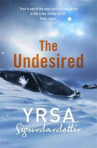 The Undesired (e-bok)