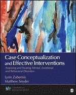 how to develop case conceptualization skills