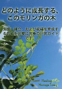 (Japanese Edition) How to Grow a Moringa Tree: The Ultimate Study Guide to Assist, Establish, and Perfect the Art to Cultivating a Blessing. (häftad)