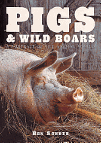 Pigs and Wild Boars (inbunden)
