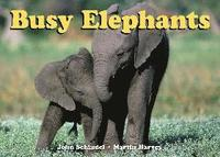 Busy Elephants (h�ftad)