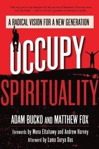 Occupy Spirituality (h�ftad)
