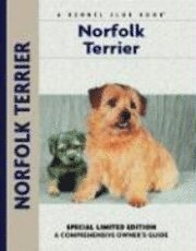Norfolk Terrier (e-bok)