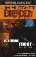 Jim Butcher's the Dresden Files: v. 2 Storm Front - Maelstrom (h�ftad)