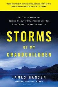 Storms of My Grandchildren: The Truth about the Coming Climate Catastrophe and Our Last Chance to Save Humanity (h�ftad)