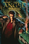 Angel: After The Fall Vol.1
