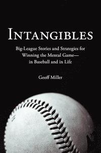Intangibles (h�ftad)