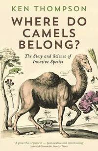 Where Do Camels Belong? (inbunden)