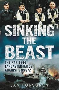 Sinking the Beast (h�ftad)