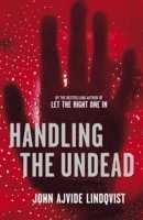 Handling the undead / John Ajvide Lindqvist ; translated from the Swedish by Ebba Segerberg.