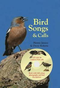 Bird Songs &; Calls (inbunden)