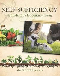 Self-sufficiency (kartonnage)