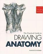 Drawing Anatomy (h�ftad)