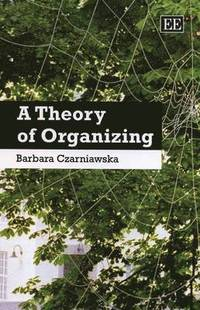 A Theory of Organizing (e-bok)