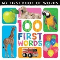 My First Book of Words: 100 First Words