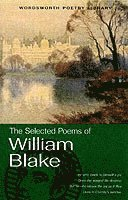 The Selected Poems of William Blake (h�ftad)