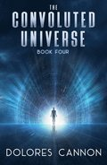 Convoluted Universe: Book Four
