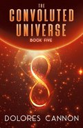 Convoluted Universe: Book Five