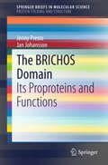 BRICHOS Domain