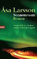 Sonnensturm (e-bok)