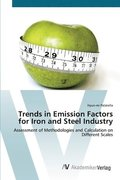 Trends in Emission Factors for Iron and Steel Industry