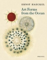 Art Forms from the Ocean (h�ftad)