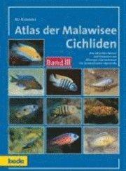 Atlas der Malawisee Cichliden 3 (inbunden)