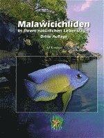 Malawicichliden in ihrem nat�rlichen Lebensraum (inbunden)
