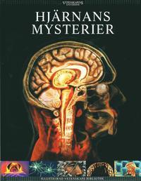Hj�rnans mysterier (inbunden)