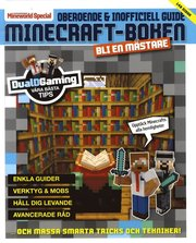 Minecraft Boken