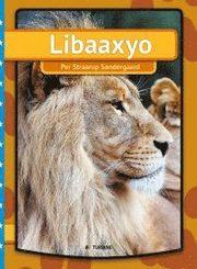 Lejon (somalisk)