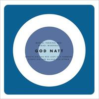 God natt Insomningsprogram (mp3-bok)