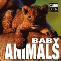 Baby Animals (inbunden)