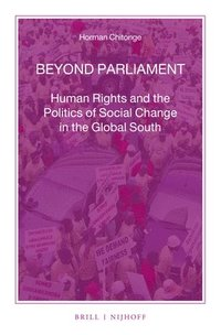 Beyond Parliament: Human Rights and the Politics of Social Change in the Global South