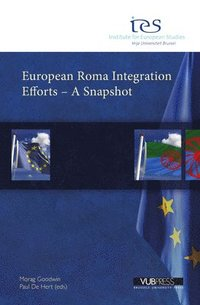 European Roma Integration Efforts - a Snapshot (e-bok)