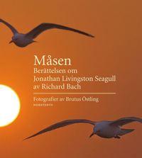 Måsen : berättelsen om Jonathan Livingston Seagull (inbunden)