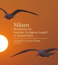 M�sen : ber�ttelsen om Jonathan Livingston Seagull (inbunden)