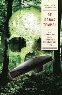 De d�das tempel : om arkeologi och jakten p� sten�lderns sj�l (e-bok)
