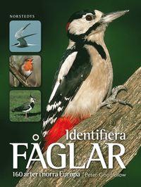 Identifiera f�glar : 160 arter i norra Europa (h�ftad)