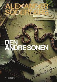 Den andre sonen (e-bok)