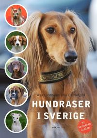 Hundraser i Sverige (kartonnage)