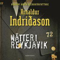 N�tter i Reykjavik (ljudbok)