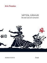 Vatten, g�shud : ett otal ord om romanen (e-bok)