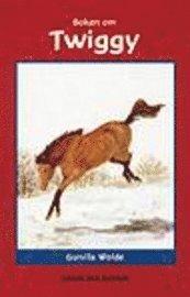 Boken om Twiggy (kartonnage)