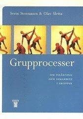 Grupprocesser : Om inl�rning och samarbete i grupper (h�ftad)