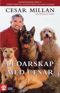 Ledarskap med Cesar (inbunden)