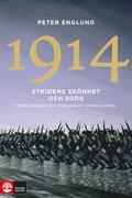 1914 Stridens sk�nhet och sorg : F�rsta v�rldskrigets inledande �r i 68 korta kapitel