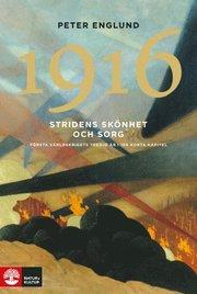 1916 Stridens skönhet och sorg : första världskrigets tredje år i 106 korta kapitel