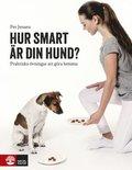 Hur smart �r din hund